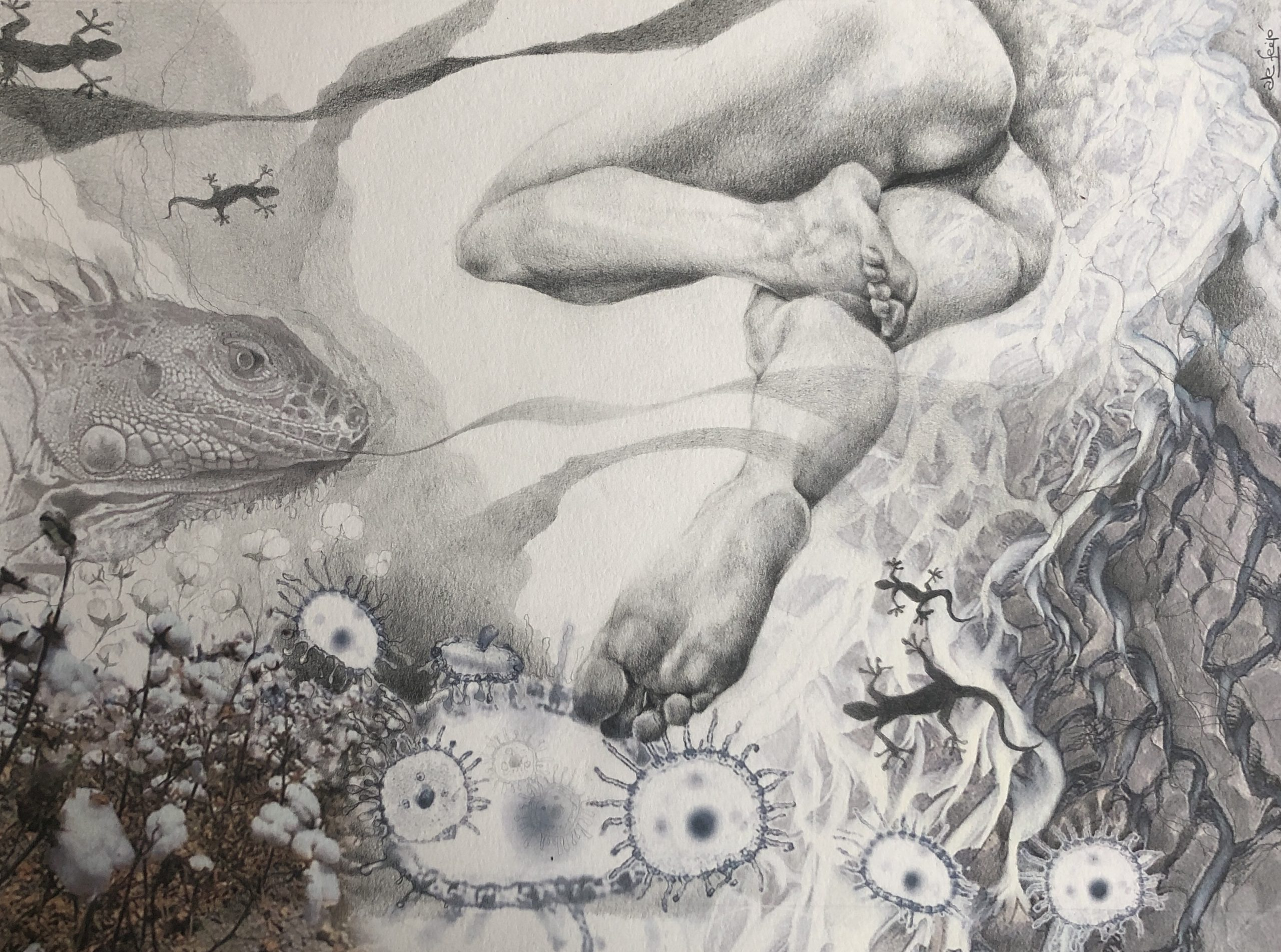Ale Feijó | Mixtura de cuerpos IV | Técnica mixta: dibujo sobre papel y collage digital impreso sobre el papel dibujado. 34 x 23.5 cm